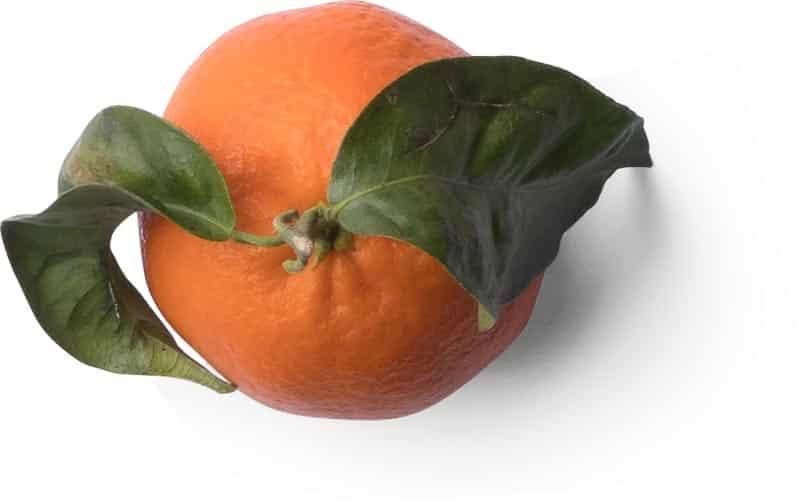 Bio Léman Gland produits frais